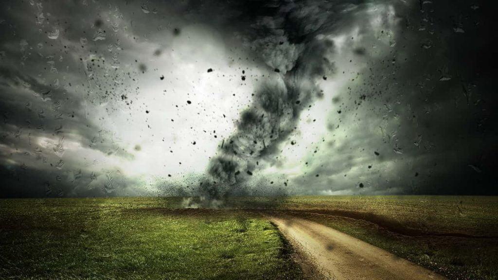 Badai Kehidupan Koloni Saham